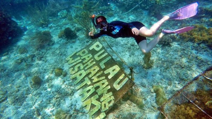 open trip pulau pahawang dari merak