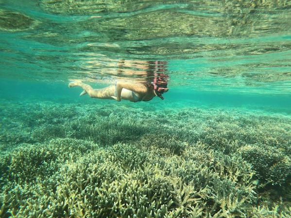 Open Trip Derawan untuk Pecinta Alam Bawah Laut