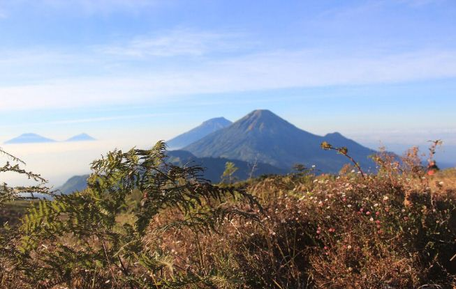 Pariwisata Gunung Prau Dieng